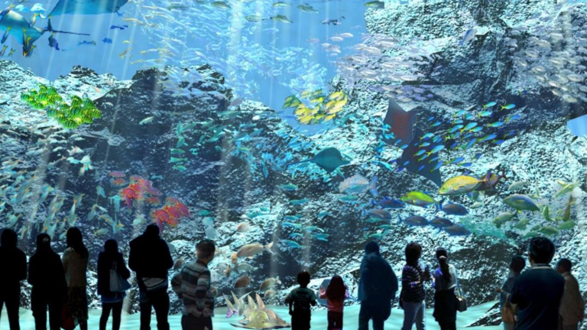 「福爾摩沙」展區以台灣海峽、巴士海峽、太平洋及東海包圍的台灣豐富魚種生態為主題,帶你彷彿走進海中,一睹壯闊之美!(圖/翻攝自X park官網)
