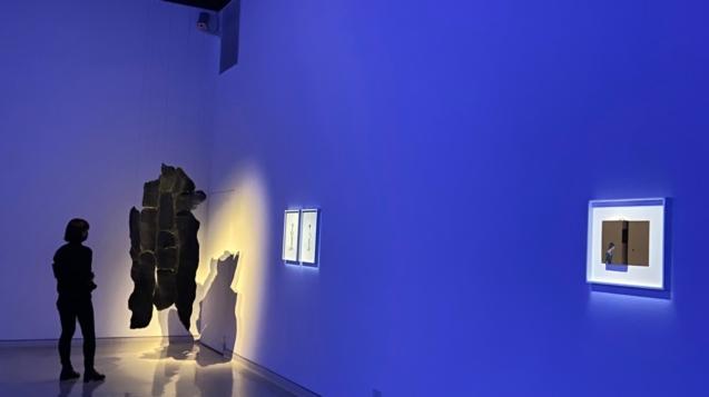 觀眾欣賞「給火星人類學家」國際當代藝術展作品(圖/新北市文化局提供)